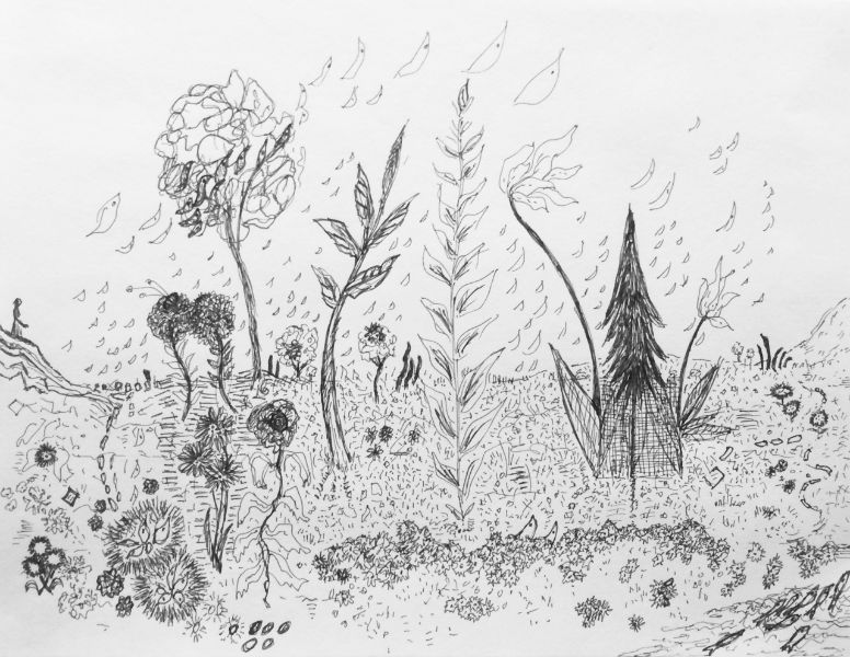The Garden Drawing- Artists in Baltimore and Frederick MD- Figurative and Contemporary Art